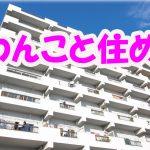わんこと住める 2LDK・マンション[岡山市・厚生町]