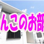 ワンちゃんと住める ペット可 1LDK・アパート [玉野市・田井]