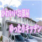 かわいいお部屋 1DK・アパート[岡山市・大安寺]