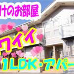 かわいい 北欧風 1LDK・アパート[岡山市北区万成西町]