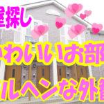 部屋探し かわいい・アパート[岡山市北区御津宇垣]]2LDK
