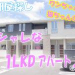 オシャレな1LDK・賃貸アパート[岡山市中区高屋]