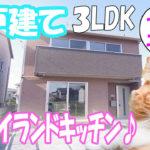 一戸建ての借家 猫・犬と住める 3LDK物件[岡山市北区学南町]