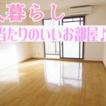 女性一人暮らし部屋  おしゃれなインテリア1K賃貸マンション 岡山市北区富田町