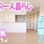 女子の一人暮らし かわいい雰囲気のお部屋 1ldk賃貸アパート岡山市中区平井