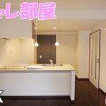 女子一人暮らし おしゃれな雰囲気の部屋 1ldk賃貸マンション 岡山市北区番町