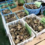 日生観光 春の牡蠣を食べる
