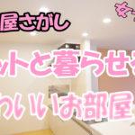 かわいい ペット共生アパート 1LDK[岡山市中区国富]